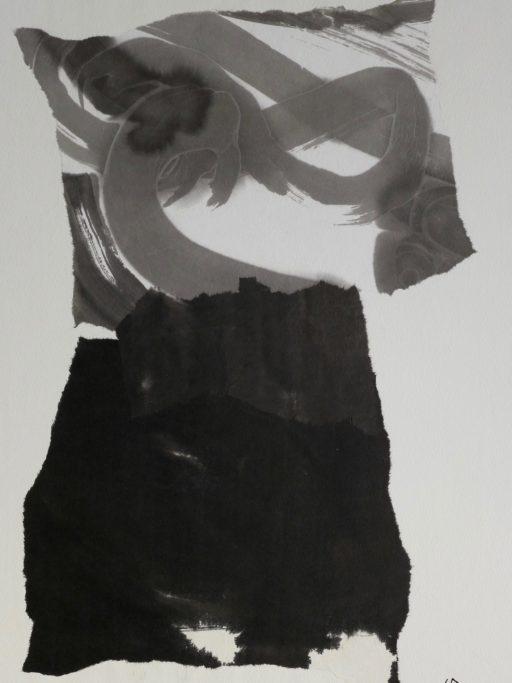 collage sur toile 65x50